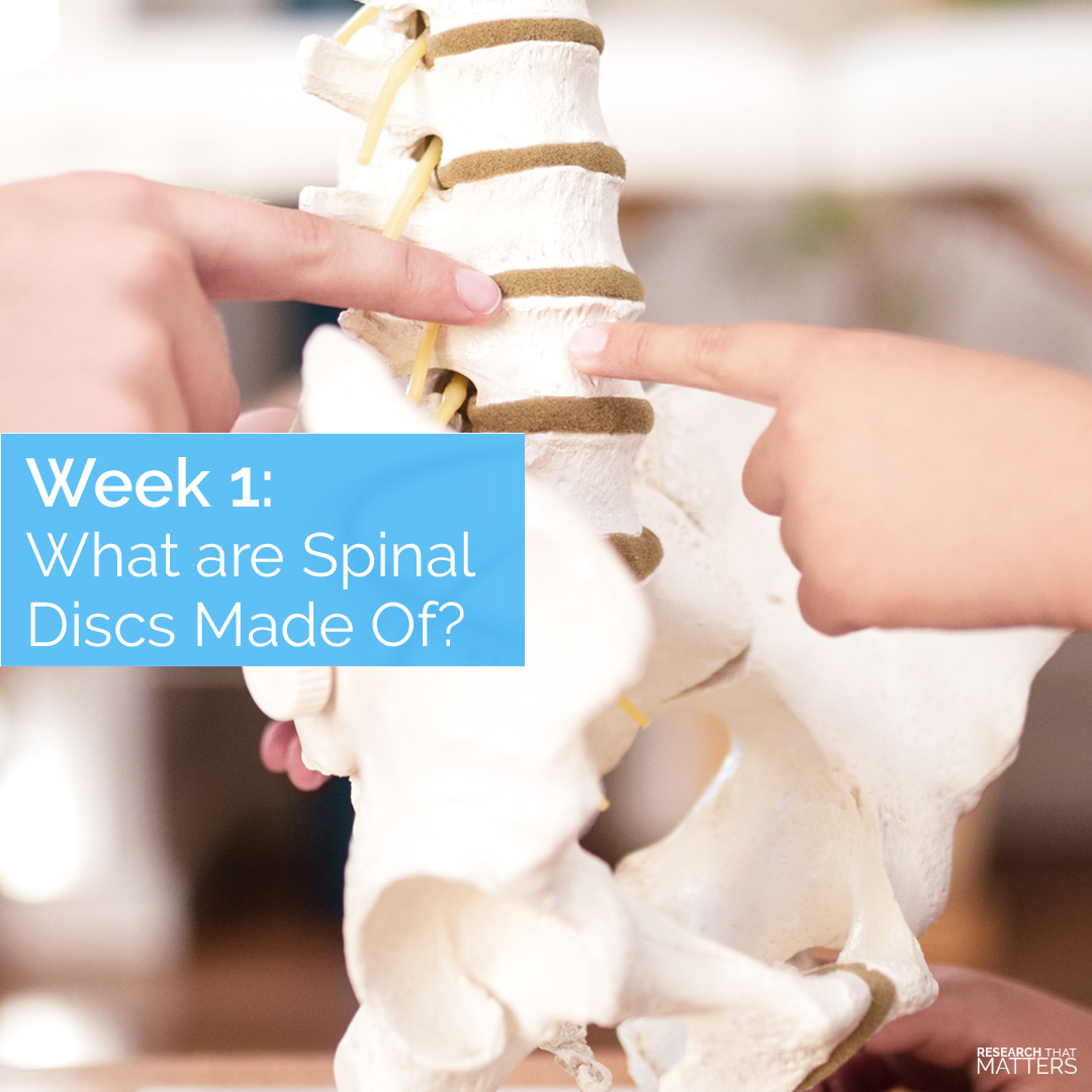 Week 1 - What are Spinal Discs Made of.jpg (1)